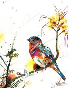chirp-96-desert-bird-of-paradise